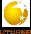 辽宁公共频道